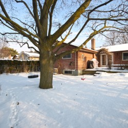 Backyard at 53 Dukinfield Crescent, Parkwoods-Donalda, Toronto