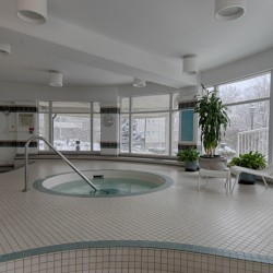 Hot Tub at 309 - 18 Concorde Place, Toronto