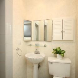 3 Piece Ensuite Bathroom at 137 Underhill Drive, Parkwoods-Donalda, Toronto