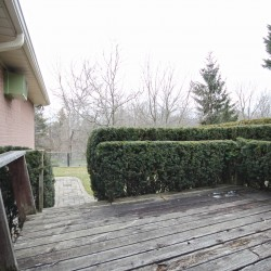 Backyard at 38 Crossburn Drive, Banbury-Don Mills, Toronto