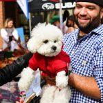 Park & Bark Dog Show