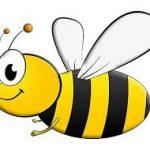 Wild Bee Club
