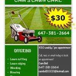 Cam's Lawn Care