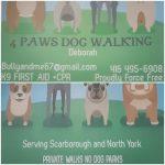 Don Mills Dog Walker!!